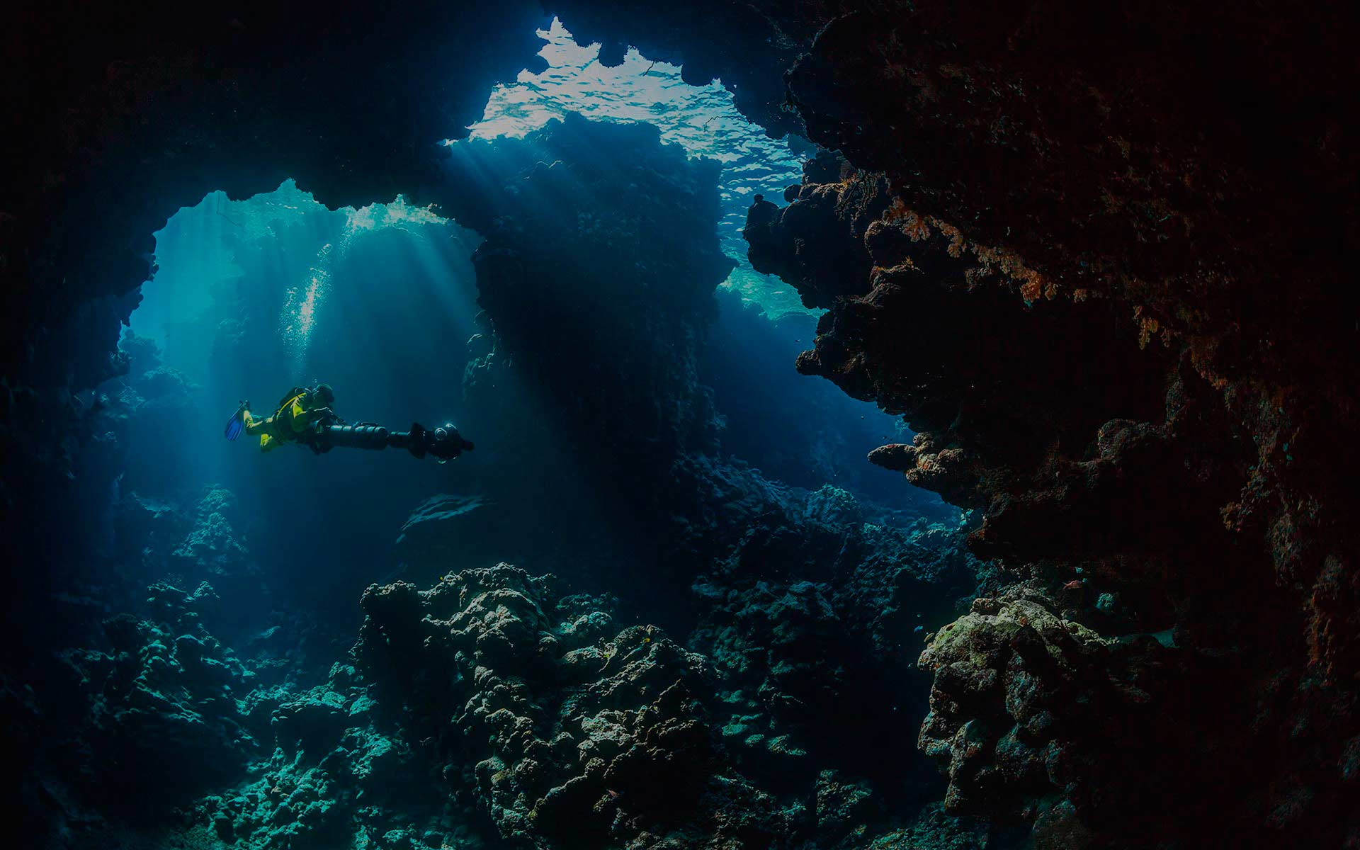 Experience the feelings of diving in the best places