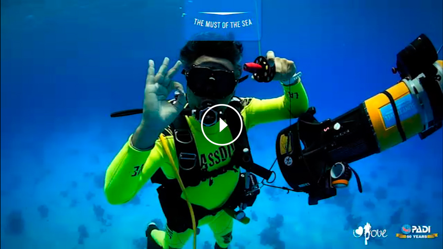 the must of the sea virtual reality technology